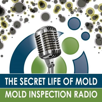 The Secret Life of Mold Podcast