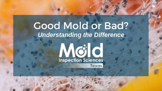 good mold or bad mold
