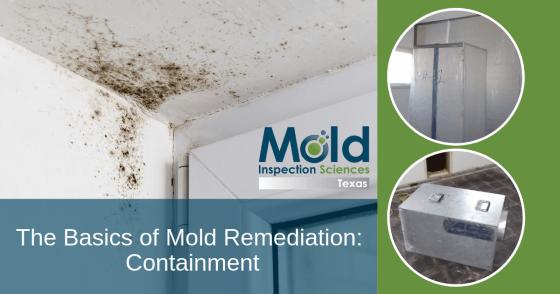 Mold Remediation the Basics Part 1: Containment