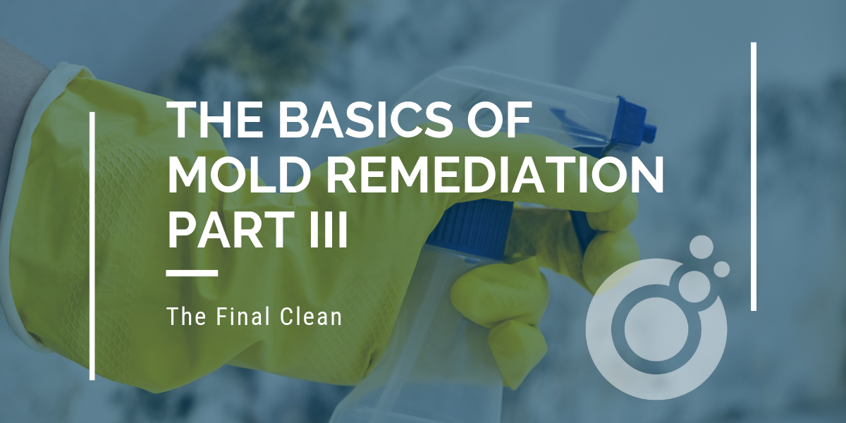 The Basics of Mold Remediation – Part III: The Final Clean