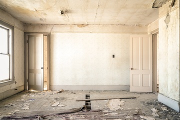 Buying a home with mold